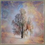 Ab09 Lonesome Tree