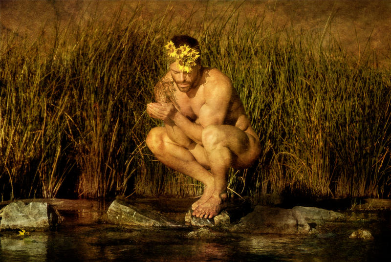 Narcissus And The Sunflowers by TomasClark