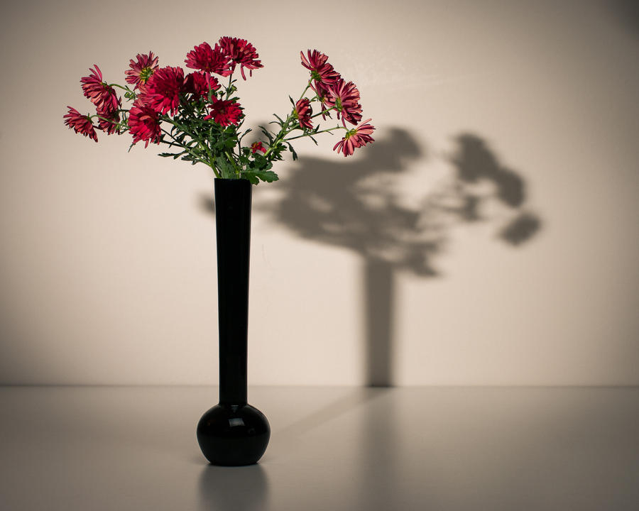 Mums in vase by brucemwalker