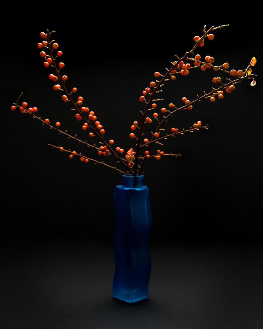Cotoneaster in blue vase by brucemwalker