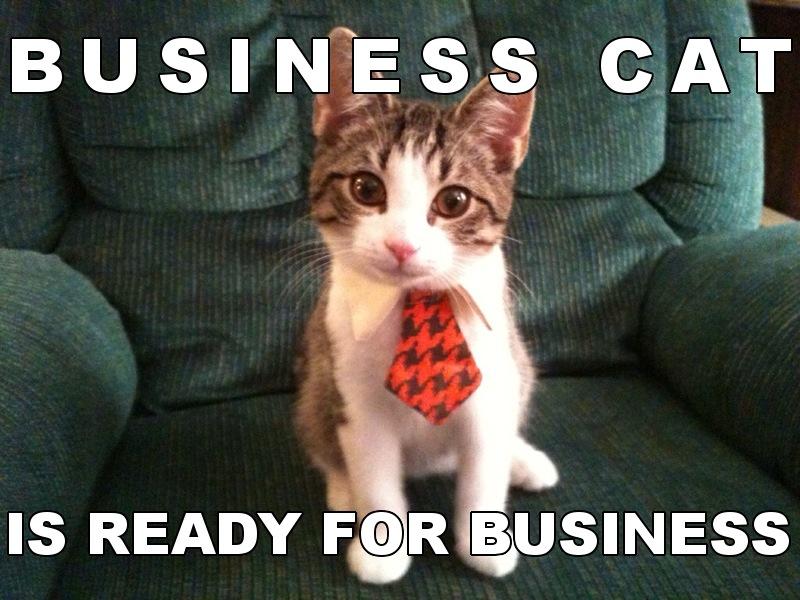 Bussiness Cat Meme