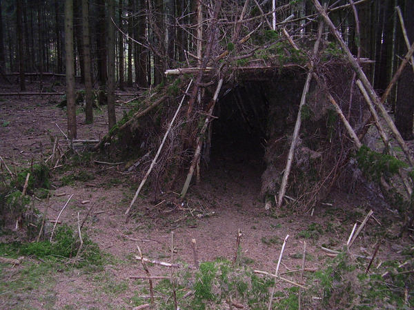 The witch 39 s hideout by sketchyjude on deviantart - The hideout in the woods an artists dream ...