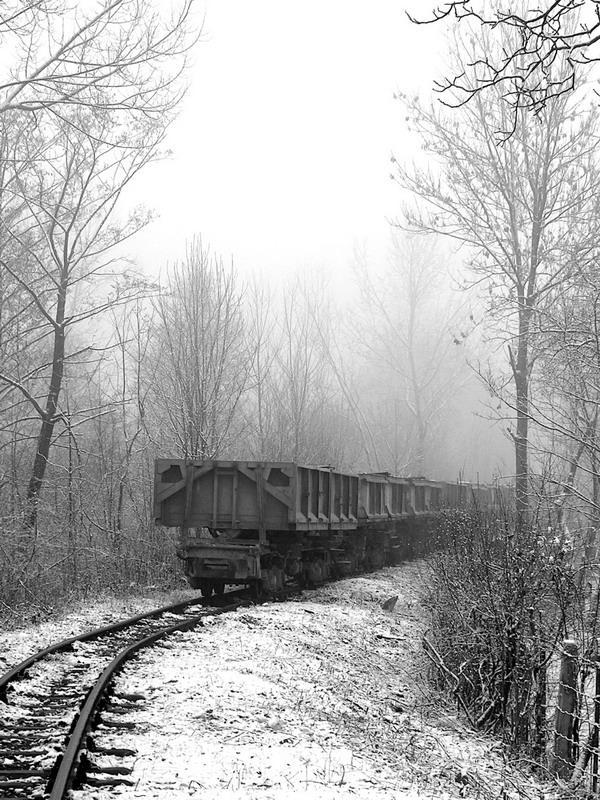 The Journey by Alexandru1988