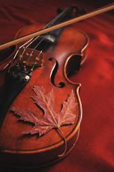Vivaldi's Autumn Dream