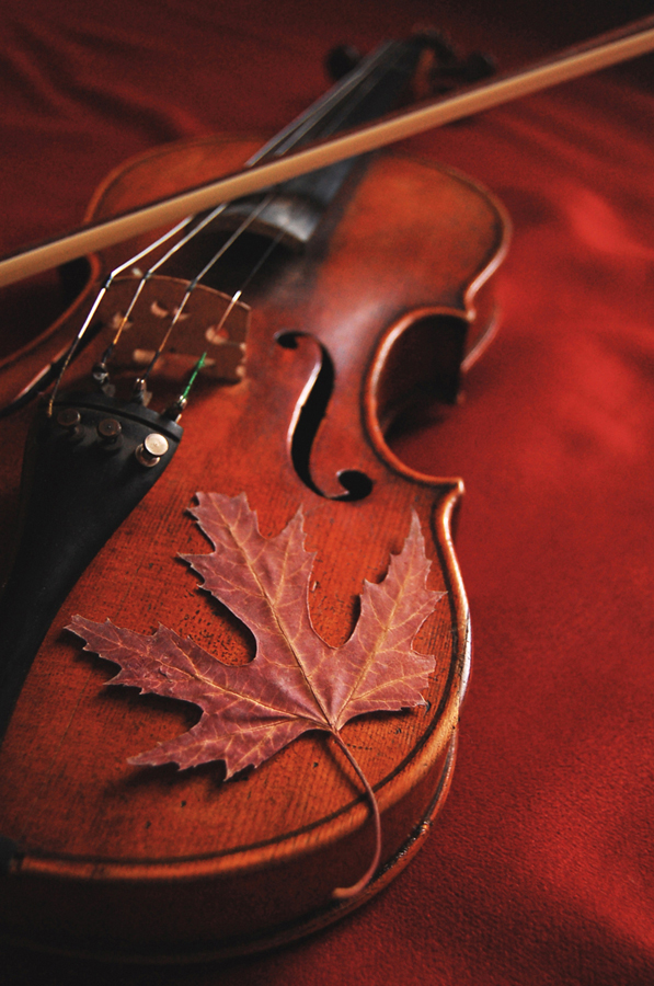 Vivaldi's Autumn Dream by Alexandru1988