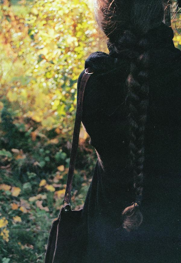 Autumn Embracement by Alexandru1988