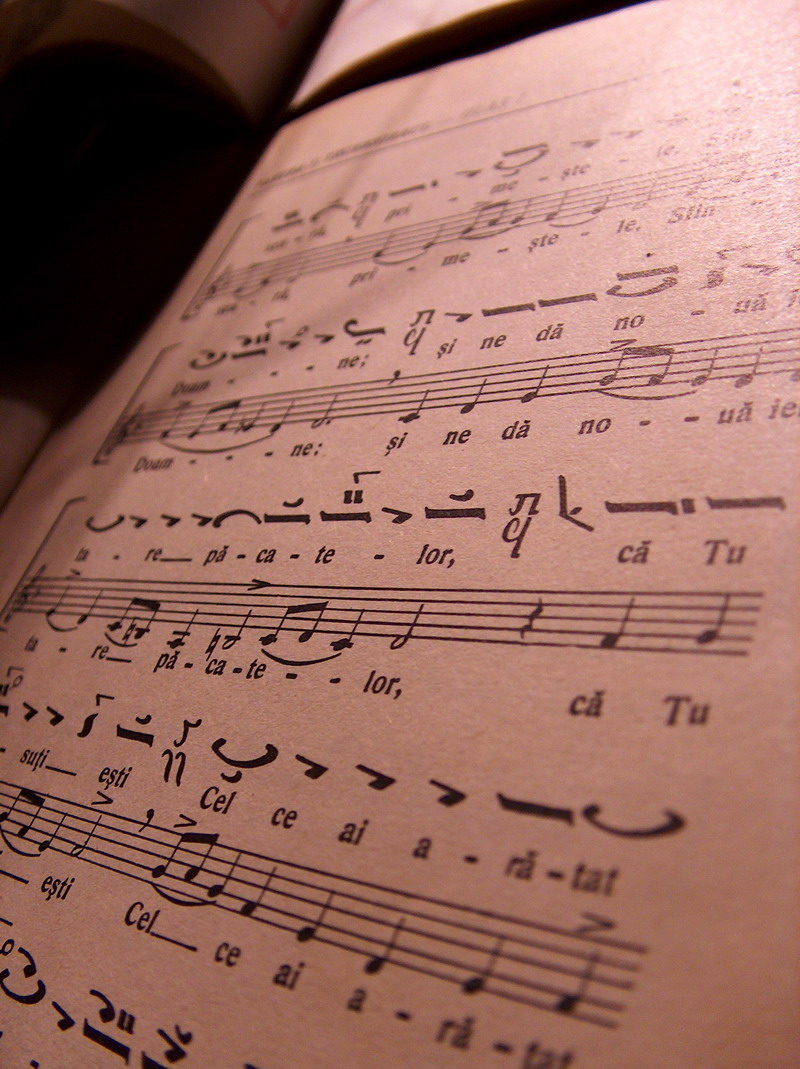 A Song For The Deaf by Alexandru1988