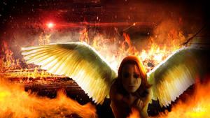 Men destroy, Angels cry.