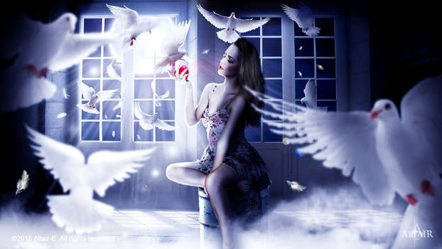 Doves dance in the moonlight