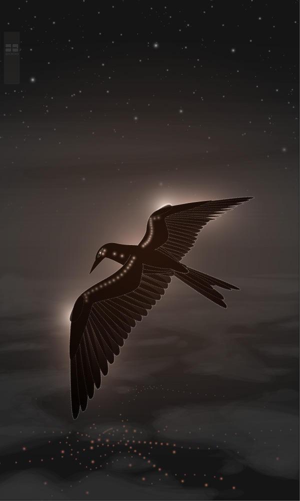 Stratospheric Blackbird by nyctopterus