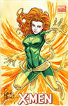 Phoenix Sketch Cover