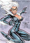 Black Cat Sketch Card by RandyGreen