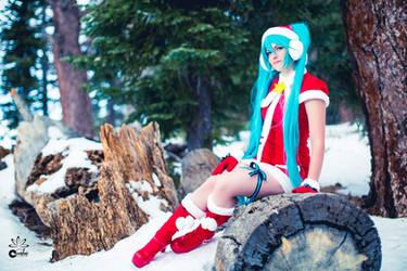 Happy Holidays! by vensii
