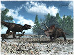 The Old Torosaurus