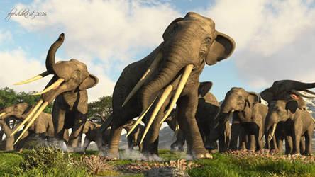 Stegotetrabelodon-Kenia 5 Mio BC