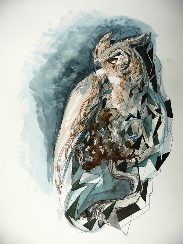 Owl by Feleri