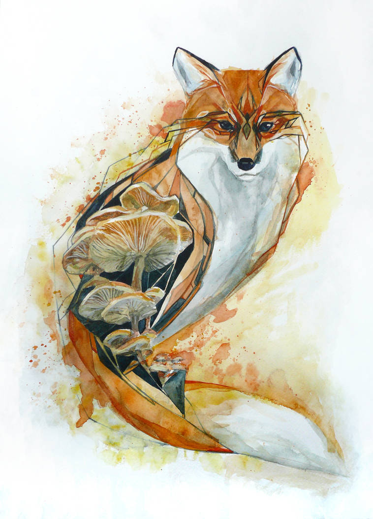 Fox by Feleri