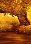Magic Forest 01 - Premade Background Stock