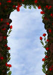arch with roses - backgroundstock