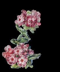 Vintage flower for corner - cutout - scrapbooking by Dark-WorkX