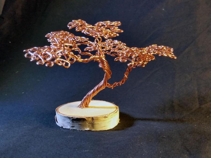 Copper on Birch by angelhitsground