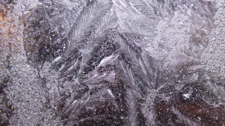 Ice flowers texture background 1 by Hermit-stock
