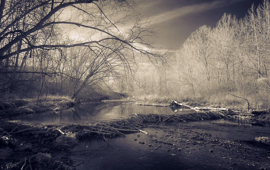 Castlewood in March by mauthbaux