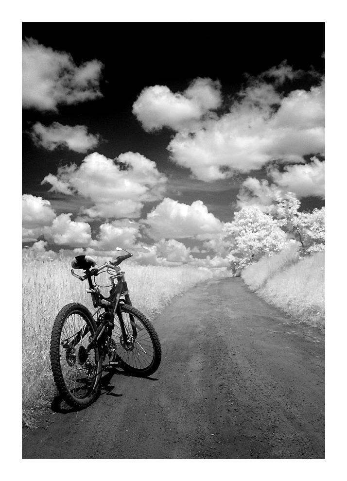 Bike by troyek