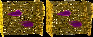 Crossview Extracellular Matrix Illustration