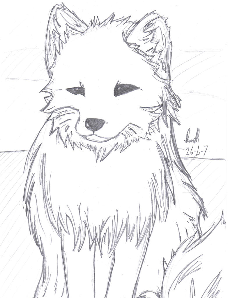 Arctic fox by cluchan on deviantart photo12