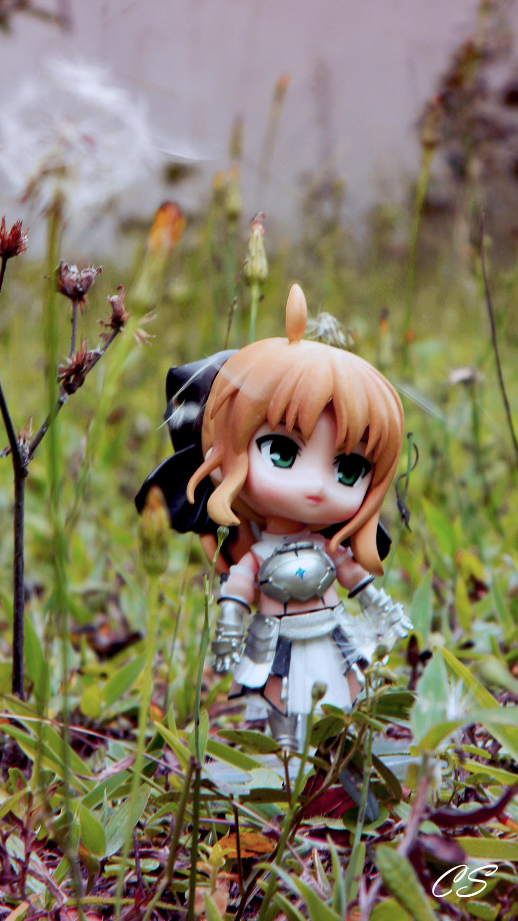 Saber Lily by PrincessTeppelin