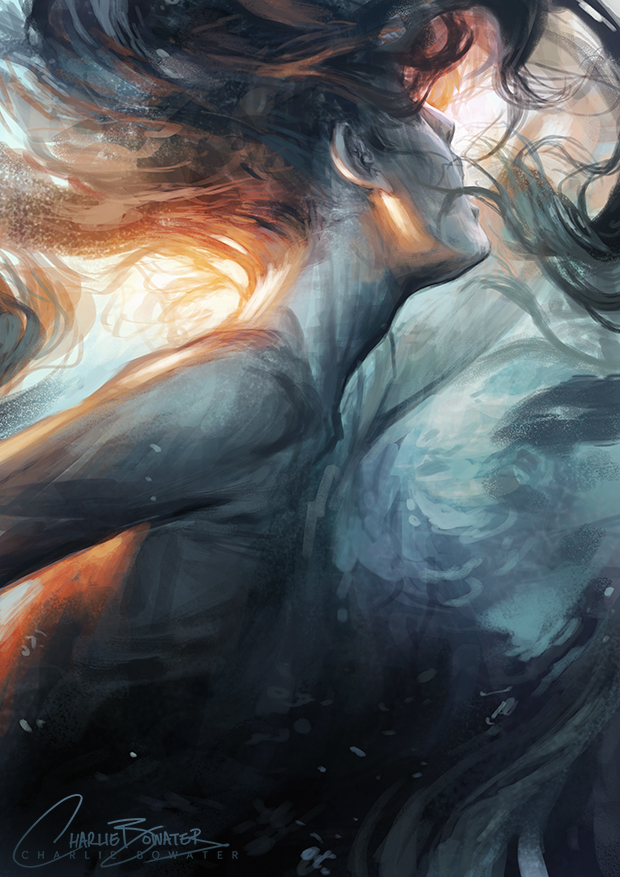 http://orig12.deviantart.net/a67a/f/2014/265/b/1/submerge_by_charlie_bowater-d8063sy.jpg