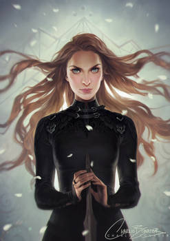 Feyre The Fox