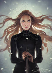 Feyre The Fox by Charlie-Bowater