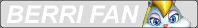 Berri (Conker) Fan Button