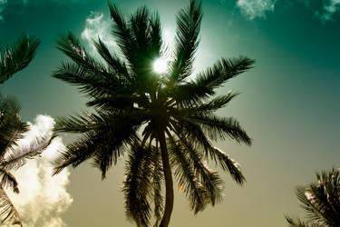 Barbados Sun