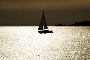 Sailing into the gold