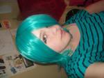 Fran wig 1