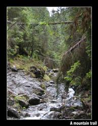 A mountain trail by FoxMaq