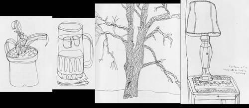 Contour Line Drawings by Ramani-Rayne
