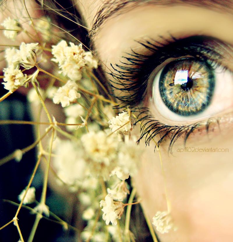 светлые волосы, глаз, ресницы, глаза, друг, девушка, волосы, любовь, приятное.