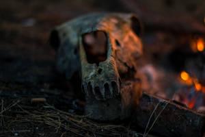 skull near a fire by KyKisan
