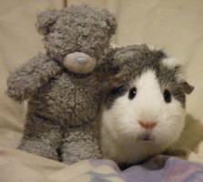 Tammy and Tatty Teddy by Candyfloss-Unicorn