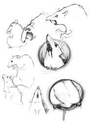 Rats study