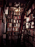 Shakespeare book shop by Shakieth
