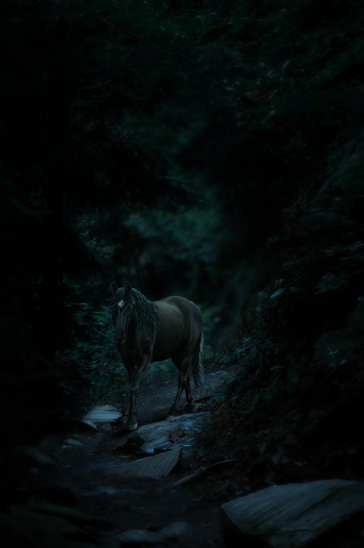 The Soul's Path by Deltapotamus