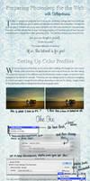 Tutorial :: Preparing Photoshop for the Web by Deltapotamus