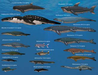 Marine predators prehistorics scales 2 (Download) by darckjack222