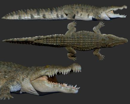 Deinosuchus zbrush