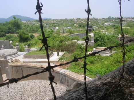Tropical graveyard